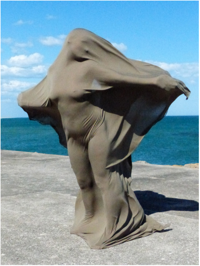 Sculpte par le vent